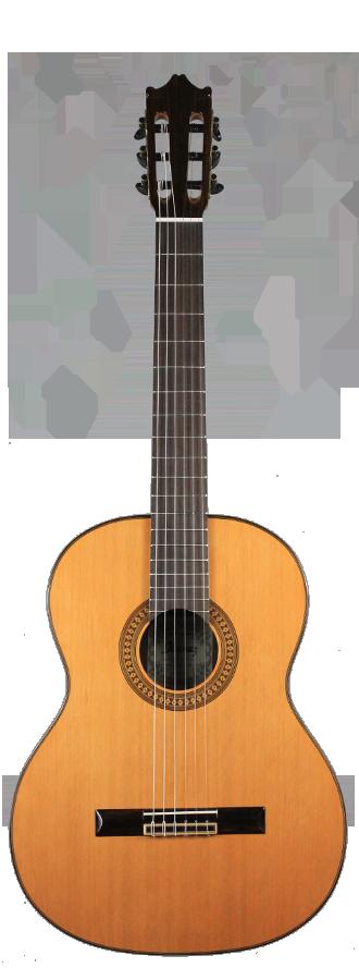 Ibanez G500-NT